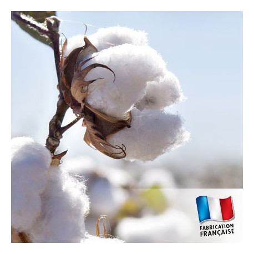 Parfum pour Bougie - Fleur de Coton