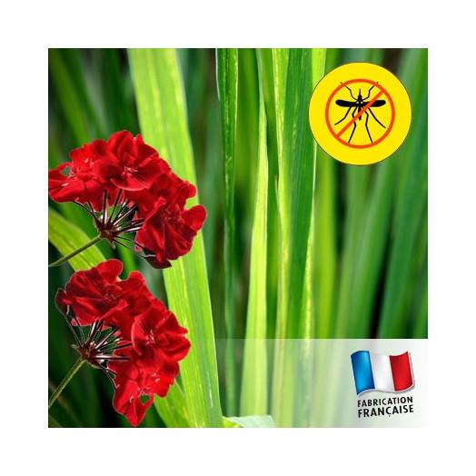 Huile Pour Bougies : Citronnelle & Géranium Anti-Moustique
