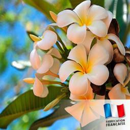 Parfum pour Bougies - Fleur de tiaré