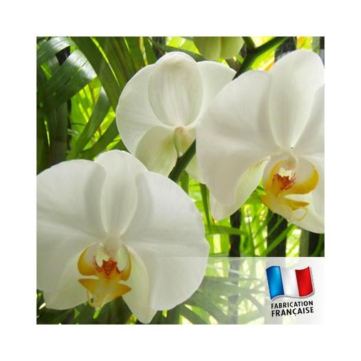 Parfum pour Bougie - Orchidée Blanche
