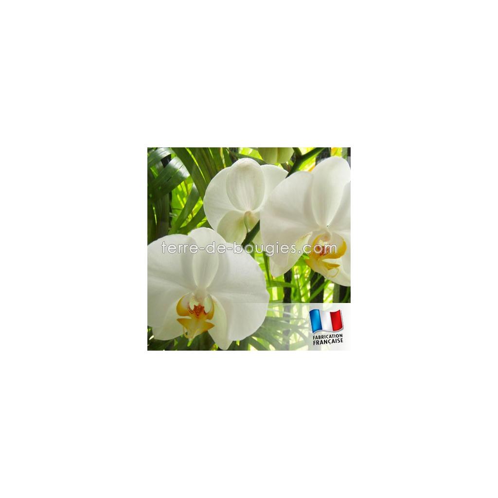 parfum pour bougies orchid e blanche fabrication de bougies. Black Bedroom Furniture Sets. Home Design Ideas
