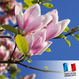 Parfum pour Bougies - Magnolia