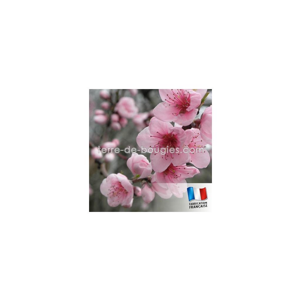 parfum pour bougies fleur de cerisier fabrication de bougies. Black Bedroom Furniture Sets. Home Design Ideas