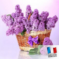 Parfum pour bougies - Lilas 0