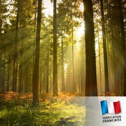 Parfum pour bougies - Ballade en forêt
